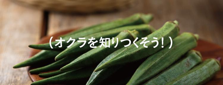 (オクラを知りつくそう!)